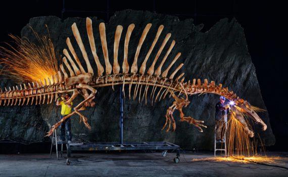 chi-spinosaurus-aegyptiacus-ct0021198313-20140427
